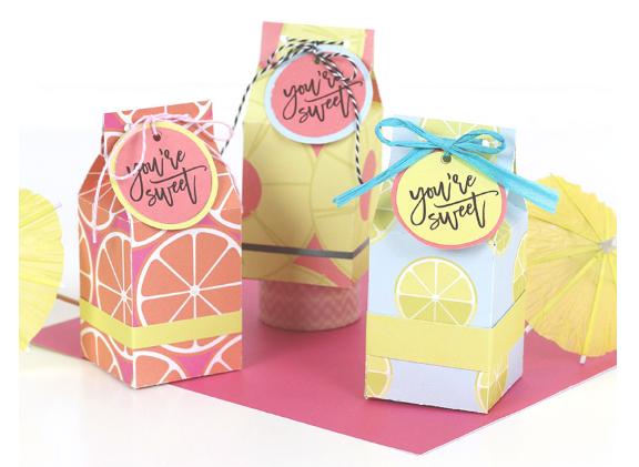 Mini Milk Carton Treat Box