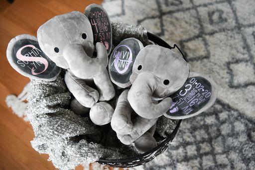 customized birth stat elephants